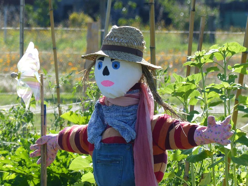 scarecrow-2607788_960_720