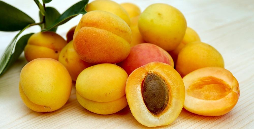 abricot.jpg